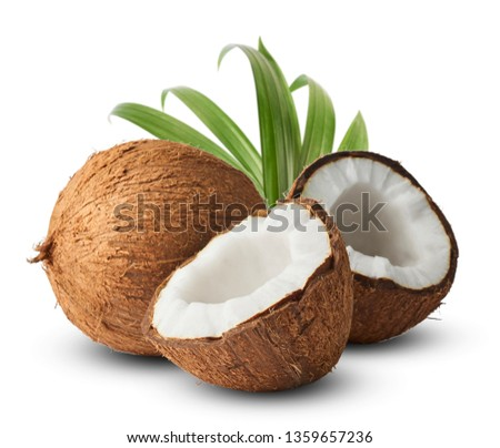 Fresh raw coconut with palm leaves isolated on white background. High resolution image #1359657236