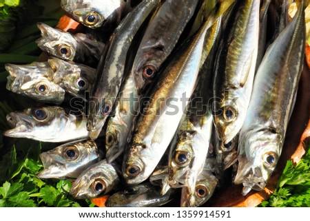 fresh fish and greens. #1359914591
