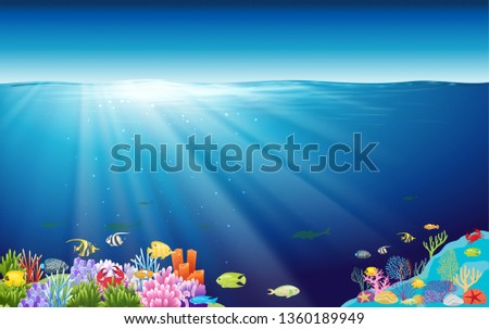 colorful coral reef and colorful fish at underwater in the ocean #1360189949