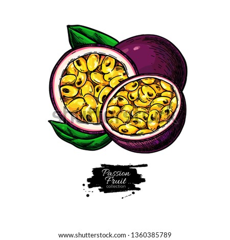 Passion fruit vector drawing. Hand drawn tropical food illustration. Summer passionfruit. Whole and sliced maracuya with leaves. Botanical sketch for label, juice packaging design #1360385789