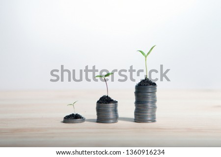 Idea money growing concept. Business success concept. Trees growing on pile of coins money  #1360916234