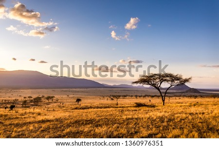Amazing sunset at savannah plains in Tsavo East National Park, Kenya #1360976351