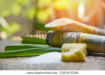 White sugar and sugar cane on wooden  table and nature background  #1361674268
