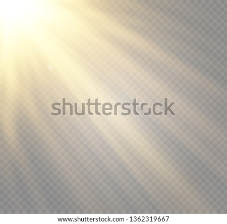 Vector transparent sunlight special lens flash light effect.front sun lens flash. Vector blur in the light of radiance. Element of decor. Horizontal stellar rays and searchlight. #1362319667