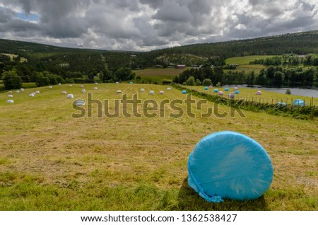 Agricultural landscape with wrapped straw packages on the gathered field. In the foreground there is a single bale. #1362538427
