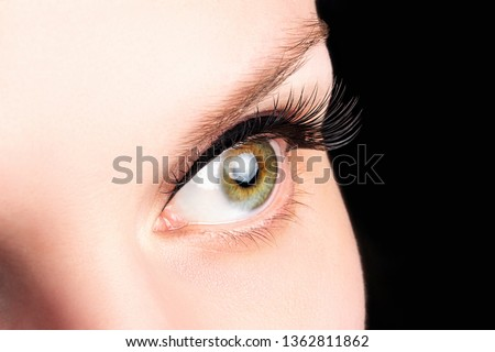 Female green eye with long eyelashes on the black background close-up. Eyelash extensions, lamination, cosmetology, ophthalmology concept. Good vision, clear skin.
