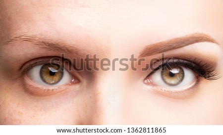 Female eyes before and after beautiful makeup, eyelash extension, eyebrow liner, microblading, cosmetology procedure, retouch. Royalty-Free Stock Photo #1362811865