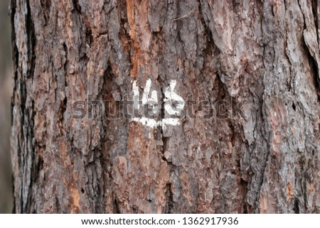 Number hundred forty six on a tree trunk put with white paint. Texture with bark of a tree and number hundred forty six of white color a close up macro horizontally. Copy space #1362917936