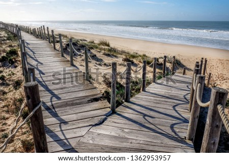 Looking down two wooden decking pathways forming a fork in the road, both heading down to a sweeping sandy beach with the blue sea and blue sky in front  Praia Da Lagoa, Algarve, Portugal.  #1362953957