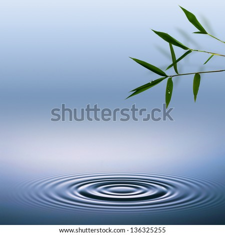 Bamboo. Abstract environmental backgrounds