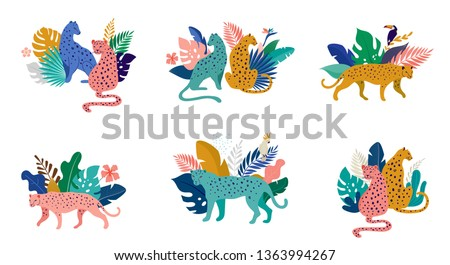 Tropical exotic animals and birds, leopards, tigers, parrots and toucans vector illustration. Wild animals in the jungle, rainforest Royalty-Free Stock Photo #1363994267