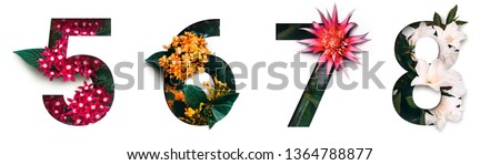 Flower font number 5, 6, 7, 8 Create with real alive flowers and white background cut shape of Number. Collection of brilliant bloom flora font for your unique text, typography with many concept ideas #1364788877