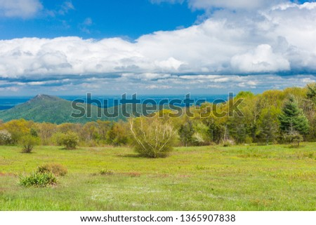 Old Rag View Overlook in Shenandoah National Park in Virginia, United States #1365907838