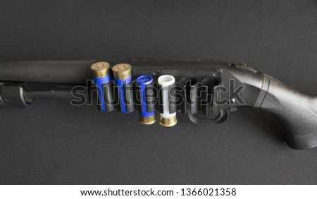 Fragment of a smooth-bore shotgun rifle with mounted cartridge belt and one of the shotgun and three shotgun cartridges. With natural light on a black background. #1366021358