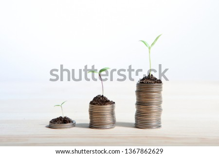 Idea money growing concept. Business success concept. Trees growing on pile of coins money  #1367862629