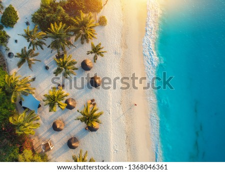 Aerial view of umbrellas, palms on the sandy beach of Indian Ocean at sunset. Summer holiday in Zanzibar, Africa. Tropical landscape with palm trees, parasols, white sand, blue water, waves. Top view #1368046361