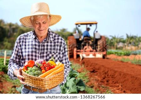 Man holding basket with healthy organic vegetables. Plantation background. #1368267566
