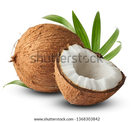Fresh raw coconut with palm leaves isolated on white background. High resolution image #1368303842