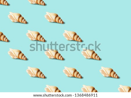 Seamless colorful pattern of shells on pastel blue color background with copy space. From top view. Conceptual trendy style. Minimal background #1368486911