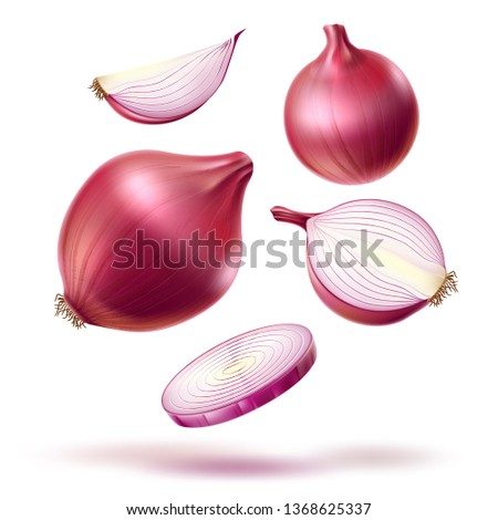 Realistic red onion whole bulb, slices mix. Fresh natural food for product package, menu design. Vector ripe sliced onion for healthy cooking. Natural and vegetarian dieting. Royalty-Free Stock Photo #1368625337