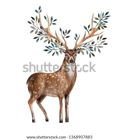 Hand painted watercolor deer isolated on white background. Animal art illustration for invitation, wedding, greeting cards etc. Antlers with leafs, branches. Wildlife concept for hipster design