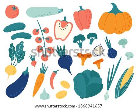 Hand drawn vegetables. Veggies nutrition doodle, organic vegan food and vegetable doodles. Tasty organic vegetarian veggies. Vector illustration isolated symbols set #1368941657