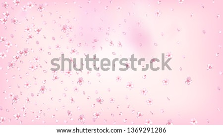 Nice Sakura Blossom Isolated Vector. Pastel Falling 3d Petals Wedding Border. Japanese Bokeh Flowers Wallpaper. Valentine, Mother's Day Tender Nice Sakura Blossom Isolated on Rose #1369291286