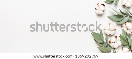 Flat lay flowers composition. Cotton flowers and fresh eucalyptus twigs on light gray background. Top view, copy space. Delicate white cotton flowers. Floral background, greeting card #1369292969