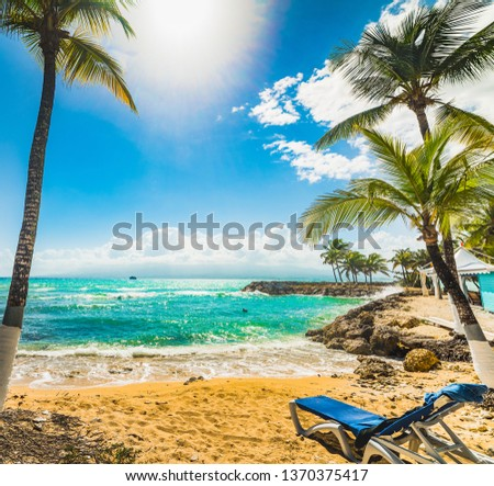 Beach chair and Coconut palm trees in Bas du Fort beach in Guadeloupe, French west indies. Lesser Antilles, Caribbean sea #1370375417