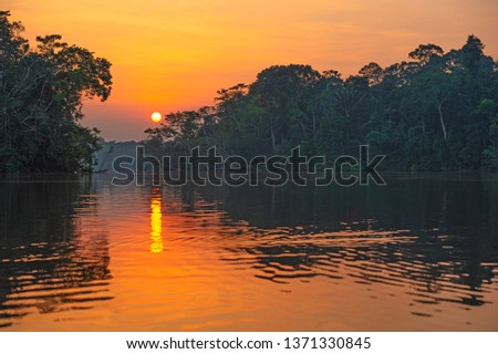 Reflection of a sunset by a lagoon inside the Amazon Rainforest Basin. The Amazon river basin comprises the countries of Brazil, Bolivia, Colombia, Ecuador, Guyana, Suriname, Peru and Venezuela.  #1371330845