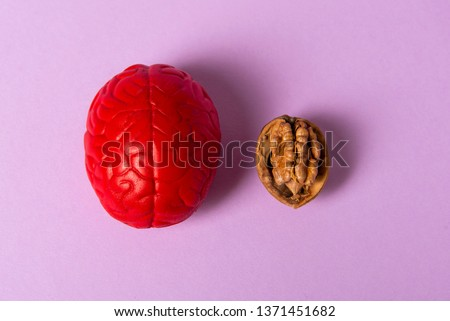 Walnut and brain mock up on pink background. The shape of the human brain is similar to walnut kernels. It symbolizes the similarity of the brain with walnuts and proven effectiveness as a healthy