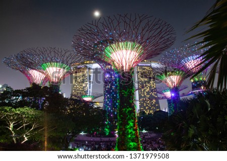 SINGAPORE, SINGAPORE - MARCH 2019: Supertrees illuminated for light show in gardens by the bay #1371979508