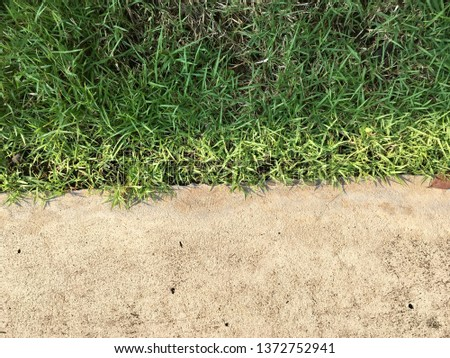 Cement with grass floor texture for background #1372752941