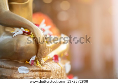 Close up Buddha statue with raw of Brass with warm light tone. Hand of buddha image with leaf on the lap of buddha. Believe, Culture of Asia, Traditional. Buddhist believe, Calm, meditation concept.