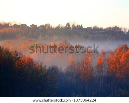 Autumn landscape on foggy evening in lesser Poland near Krakow, Poland #1373064224