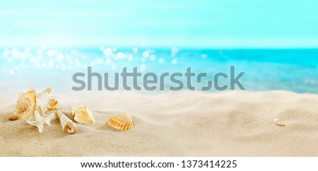 View of the sandy beach. Shells in the sand. Royalty-Free Stock Photo #1373414225