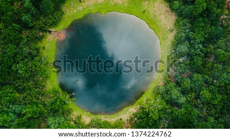 Aerial view of natural pond surrounded by pine trees in Fanal, Madeira island, Portugal