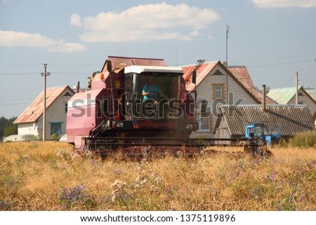 Big red harvester harvesting wheat field on background of village houses - rural landscape, agriculture lifestyle #1375119896