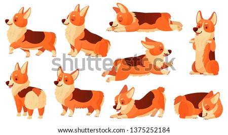 Cartoon dog character. Sleeping corgi dogs poses, pedigree dog fitness sport exercise and relaxing pet yoga pose. Corgi puppy doggy sitting or domestic pets emotion isolated  icons set