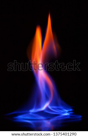 Beautiful flame of burning alcohol, great design for any purposes. Abstract blaze fire flame texture background. Gas flame. Black background. #1375401290