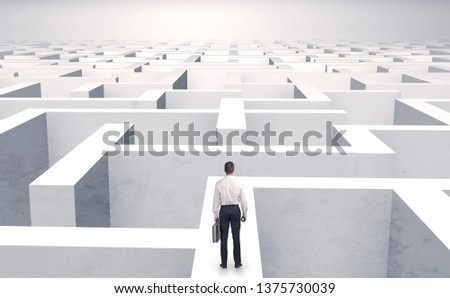 Small businessman in a middle of a huge maze #1375730039