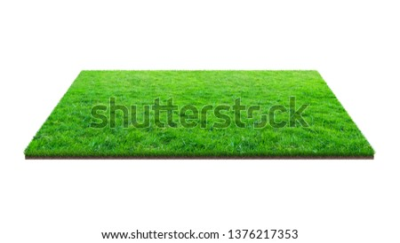 Green grass field isolated on white with clipping path. Sports field. Summer team games. Exercise and recreation place. #1376217353