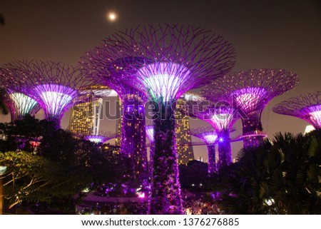 SINGAPORE, SINGAPORE - MARCH 2019: Supertrees illuminated for light show in gardens by the bay #1376276885