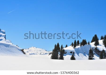 Flaine mountain (Haute Savoie) with fir trees #1376400362