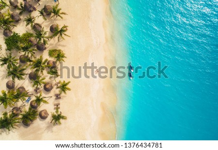 Aerial view of umbrellas, palms on the sandy beach and kayaks in the sea at sunset. Summer holiday in Zanzibar, Africa. Tropical landscape with palm trees, parasols, boat, sand, blue water. Top view #1376434781