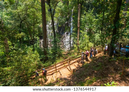 Friends walking down a dirt path between a beautiful forest full of greenery #1376544917