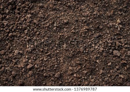 Fertile loam soil suitable for planting, soil texture background. #1376989787