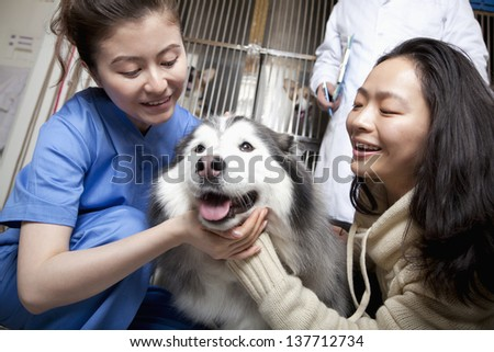 Woman with pet dog and veterinarian #137712734