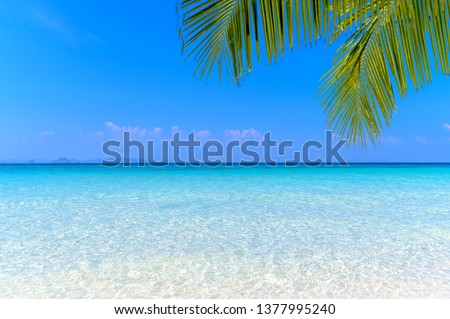 Sea view tropical sea with summer background. #1377995240