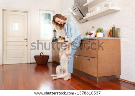 Young slim beautiful woman communicates with her big smart thoroughbred white dog standing in the kitchen of her cozy country house. Animal love concept #1378610537